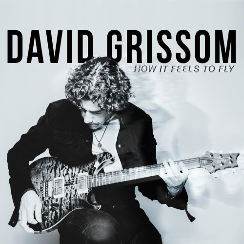 David Grissom - How It Feels to Fly (2014) [FLAC] Download