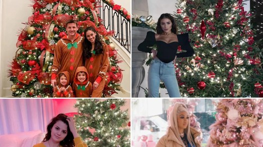 Celebrity Christmas Trees Of 2020 -- Fir Sure!