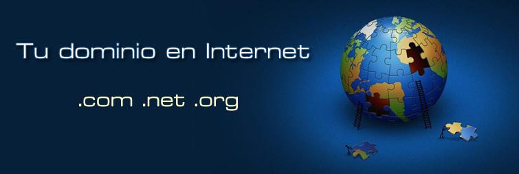 Registramos tu dominio en Internet