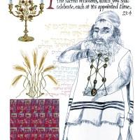Emor, Omer & Zohar: A Spiritual Evolution