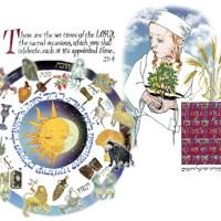 Omer, Emor & Zohar: Of Stars & Seasons