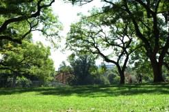 Brooklyn - Fort Green Park #01