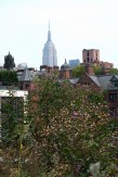 High Line #03