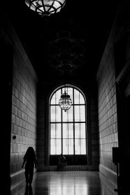 New York Public Library #03