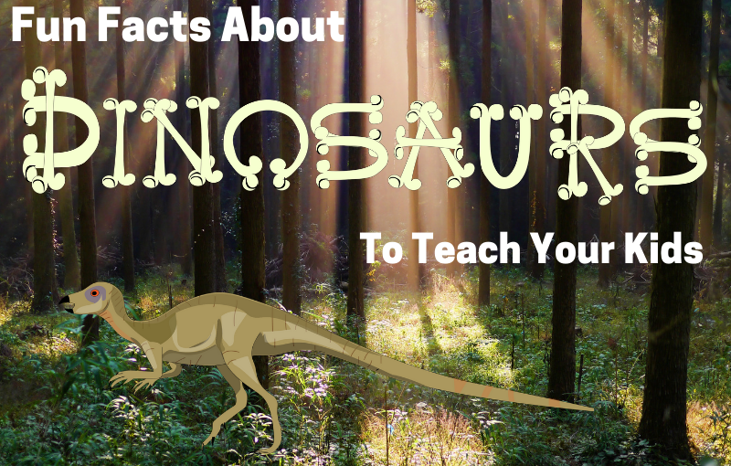 Fun Facts About Dinosaurs to Teach Your Kids