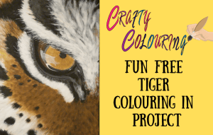 Tiger-Colouring-in-by-Barry-Brunswick