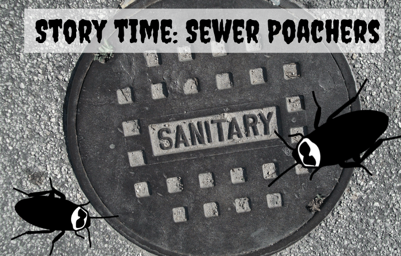 Story Time: Sewer Poachers