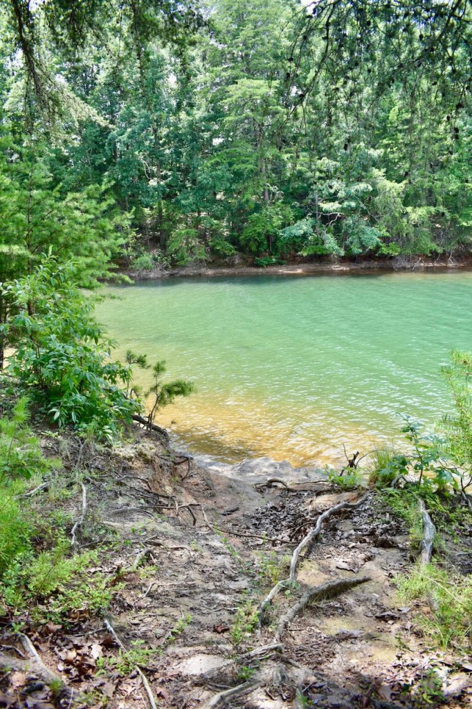 Site 7 Duckett Mill Campground