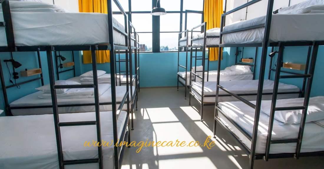 bedbugs-hostel