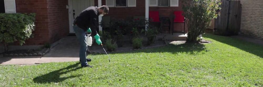 spraying_lawn_selective_herbicides