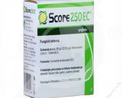 Score 250 EC (20ml)