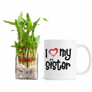 I-love-you-sister-with-plant