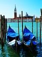 Spirit Of Venice 768x1024