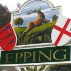 web design Epping