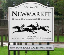 Web design company Newmarket