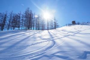 冬 日焼けしたい
