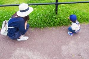 親子 公園