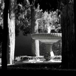 Alhambra-Fountain-II