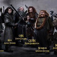 Bilbo and the 13 Dwarves ... and Their Beards