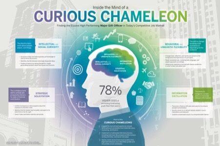 Curious Chameleon Fundraiser