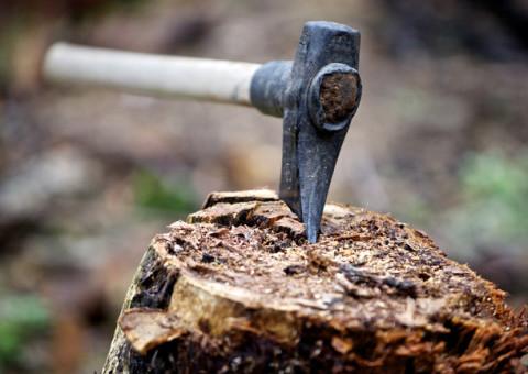 axe on wood