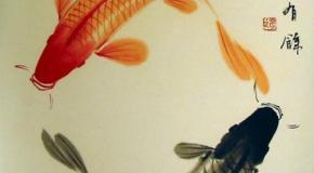 Tatuajes sobre los peces
