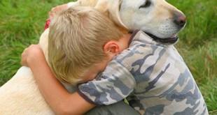 Accesorios para mascotas en Lidl
