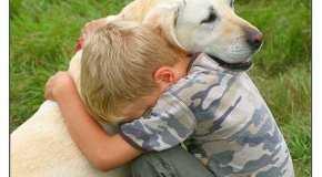 El buen efecto de acariciar a un perro