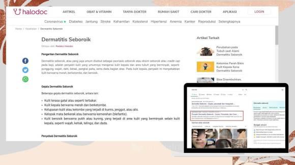 blog halodoc