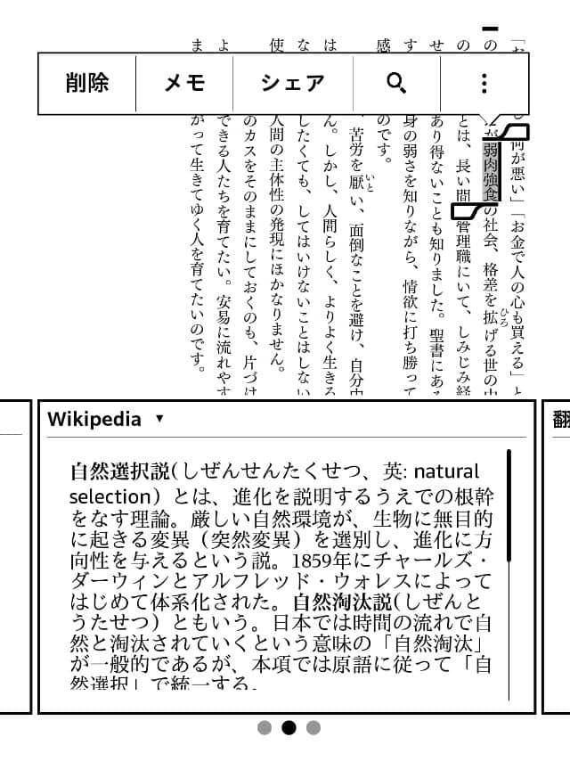 """alt""""Kindle端末でのWikipedia"""""""