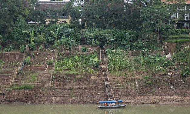 5 Ways to Experience Luang Prabang, Laos