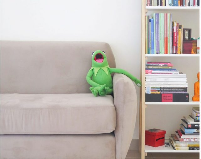 Divano con Kermit la rana