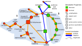 known partial correlation network2