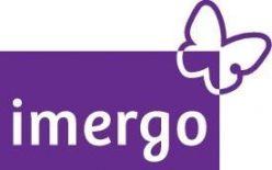 Imergo, making sense of risk