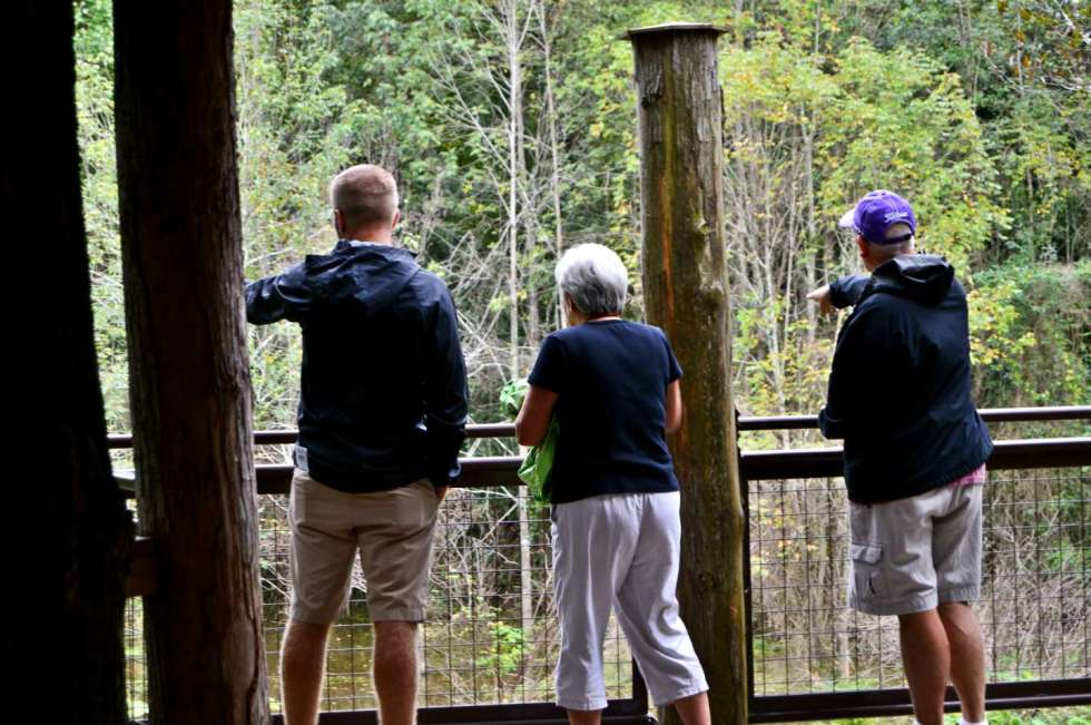 What to Do in Halifax County, North Carolina