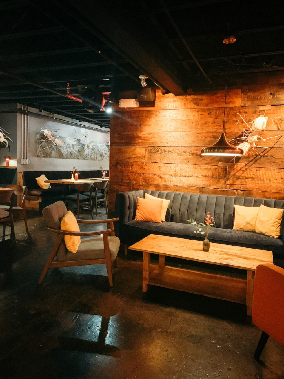 23 Awesome Things To Do in Durham - I'm Fixin' To - @imfixintoblog | Things to do in Durham by popular NC travel blog, I'm Fixin' To: image of sitting area with a velvet couch, rectangular wooden coffee table, and mid century modern armchairs.