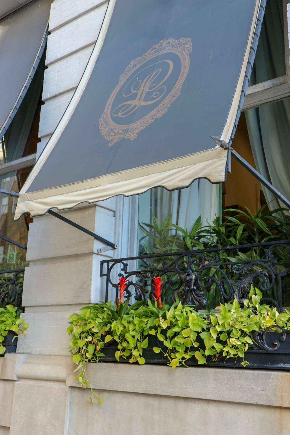 Our Holiday Weekend at New Orleans Le Pavillon - I'm Fixin' To - @mbg0112 - Our Holiday Weekend at Le Pavillon Hotel in New Orleans popular North Carolina travel blogger I'm Fixin' To