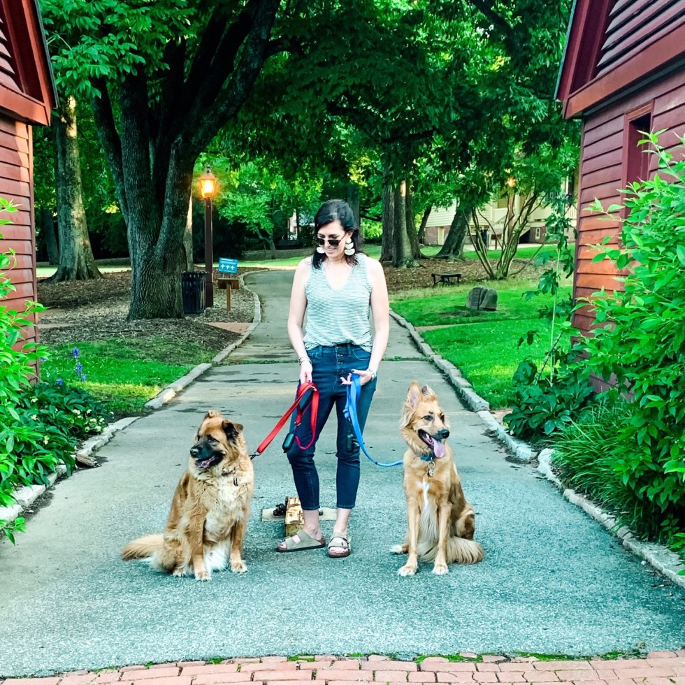 The Top 3 Places to Have a Picnic in Raleigh - I'm Fixin' To - @mbg0112 |  Picnic in Raleigh by popular North Carolina blog, I'm Fixin' To: image of a woman walking her two dogs at Mordecai Historical Park.