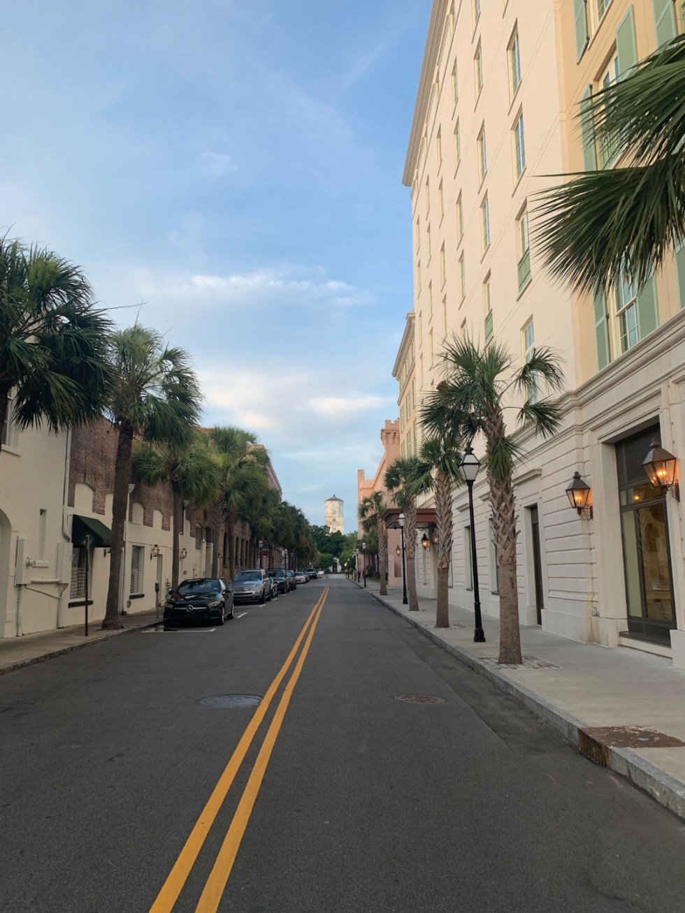 Travel Tips for Staying Safe & Healthy by popular North Carolina travel blog, I'm Fixin' To: image of a palm tree lined street.
