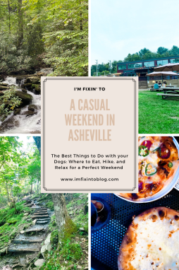 A Casual Weekend in Asheville: the Best Things to Do with your Dogs - I'm Fixin' To - @mbg0112