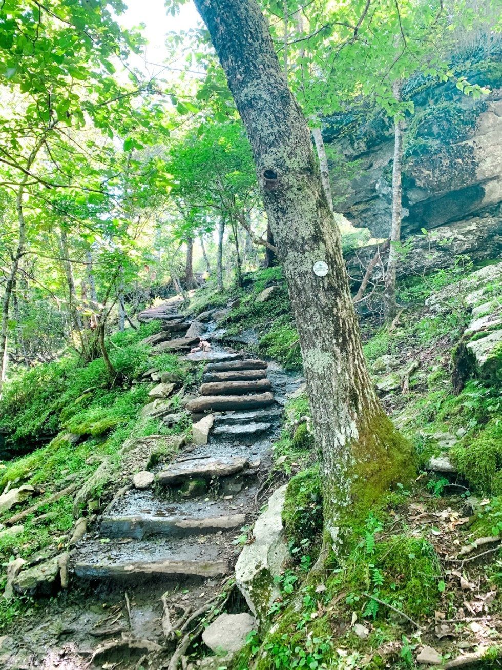 A Casual Weekend in Asheville: the Best Things to Do with your Dogs - I'm Fixin' To - @mbg0112   Weekend In Asheville by popular NC travel blog, I'm Fixin' To: image of a stone step trail.