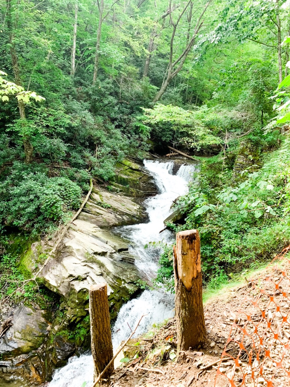 A Casual Weekend in Asheville: the Best Things to Do with your Dogs - I'm Fixin' To - @mbg0112   Weekend In Asheville by popular NC travel blog, I'm Fixin' To: image of Catawba Falls.