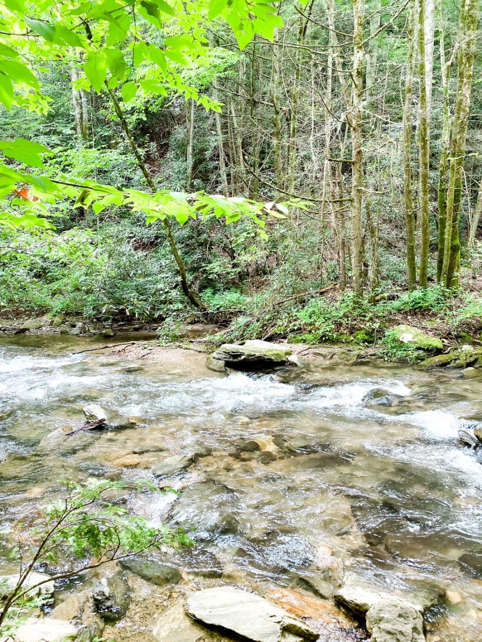 A Casual Weekend in Asheville: the Best Things to Do with your Dogs - I'm Fixin' To - @mbg0112   Weekend In Asheville by popular NC travel blog, I'm Fixin' To: image of a river.