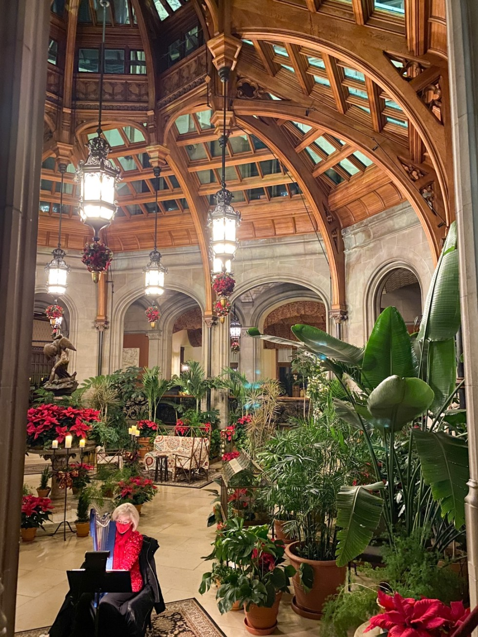 Christmas in Asheville NC by popular NC lifestyle blog, I'm Fixin' To: image of green plants and poinsettia plants at the Biltmore House.