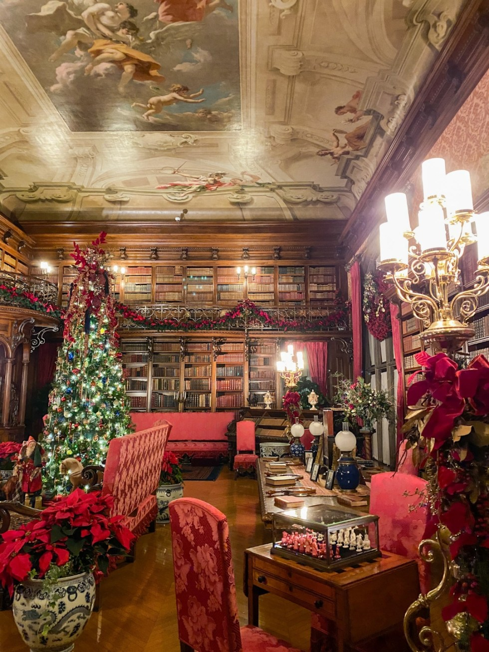 Christmas in Asheville: a Weekend Getaway During the Holidays - I'm Fixin' To - @imfixintoblog |Christmas in Asheville NC by popular NC lifestyle blog, I'm Fixin' To: image of the Biltmore House library.