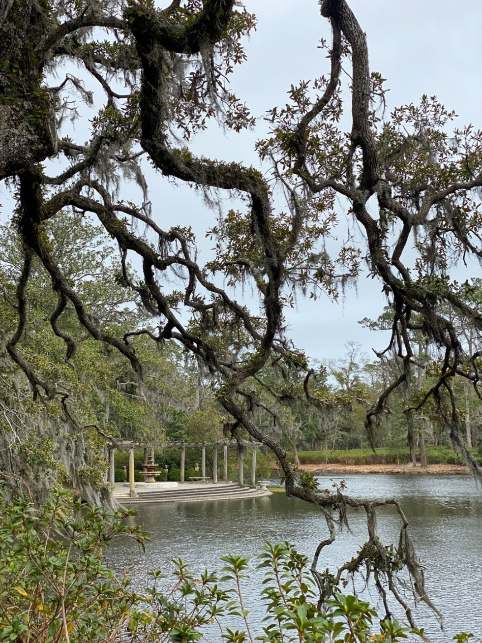 A Spring Weekend in Wilmington, NC: the Best Things to Do - I'm Fixin' To - @imfixintoblog |Weekend in Wilmington by popular NC travel blog, I'm Fixin' To: image of oak tree branches hanging over a lake.