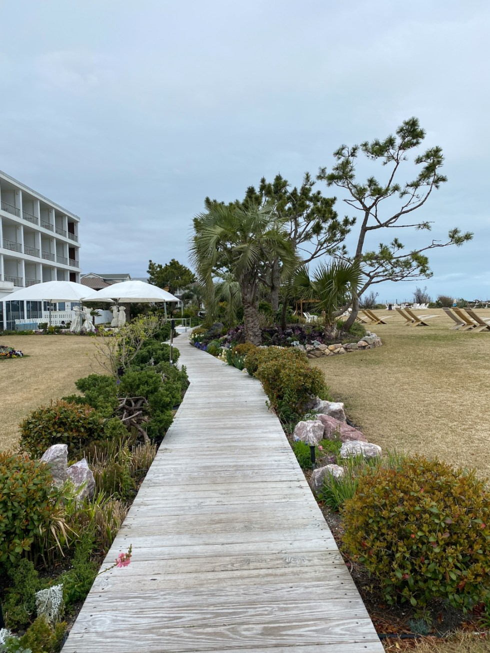 A Spring Weekend in Wilmington, NC: the Best Things to Do - I'm Fixin' To - @imfixintoblog |Weekend in Wilmington by popular NC travel blog, I'm Fixin' To: image of a wooden boardwalk.