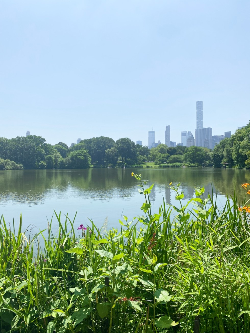 NYC Summer Weekend: Things to Do in NYC in the Summer - I'm Fixin' To - @imfixintoblog   NYC Summer Weekend by popular NC travel blog, I'm Fixin' To: image of Central Park.