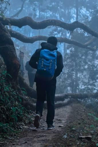 Heavenly Bandipur Hiking Trail from Bimalnagar