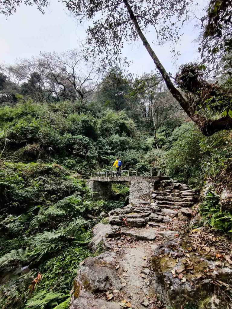 Enchanted Trail to Pasgaun, Lamjung, Nepal